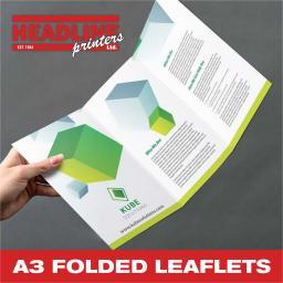 A3 FOLDED LEAFLETS.jpg
