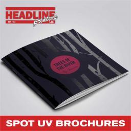 SPOT UV BROCHURES.jpg