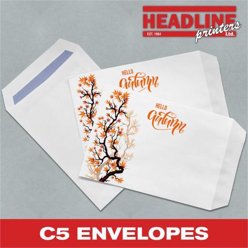 C5 Envelopes.jpg