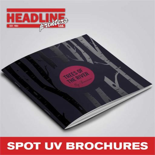 Spot UV Brochure Printing