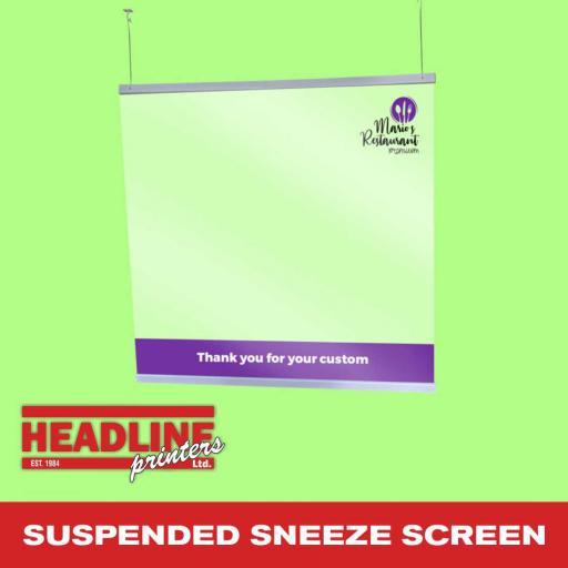 Suspended Sneeze Screen