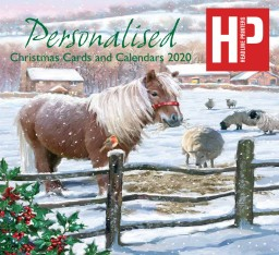 Headline Printers Christmas Card Brochure 2020.jpg